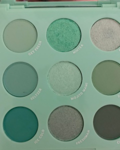 A close up poorly framed shot of the mint to be palette