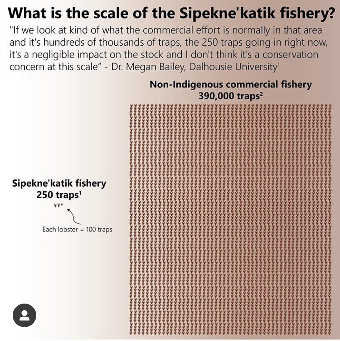 An info graph comparing the fishing traps of the indigenous fishermen versus commercial fishing. There are 250 traps used by indigenous fishermen, 390,000 used by commercial fishermen